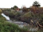 Basura en el Rio Segura