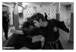 03. Budo Taijutsu - Sandro Gordo 2013