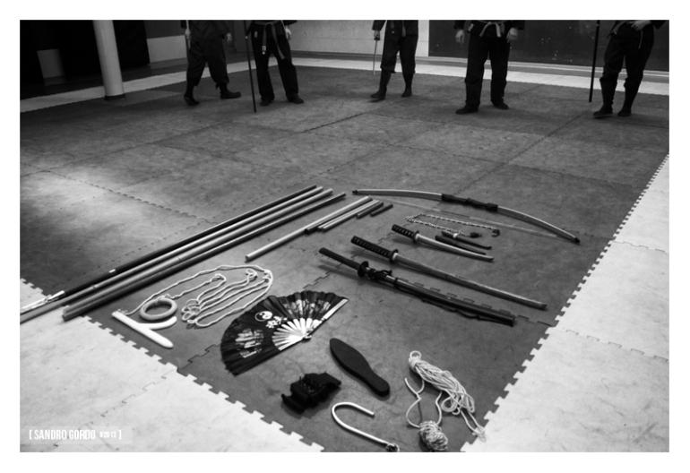 09. Budo Taijutsu - Sandro Gordo 2013